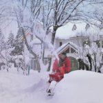 今シーズン初の雪かき!