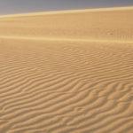 東の鳥取砂丘、西の水木しげるロード!