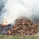 焚き火。秋は落ち葉との闘い!