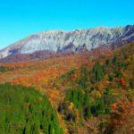 今が大山が最も綺麗な季節?!
