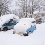 大山ホワイトリゾート・営業エリア拡大(12/30~)