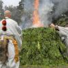 大山開山1300年祭が閉幕