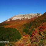 鍵掛峠からみる大山の紅葉は現在見頃!