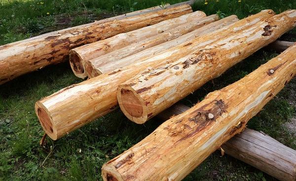 木の皮むき