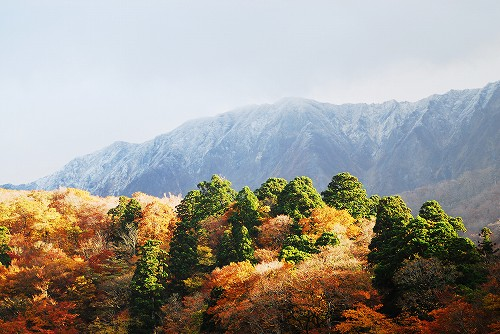 大山紅葉と初冠雪
