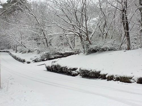 雪の大山あけまの森ペンション村
