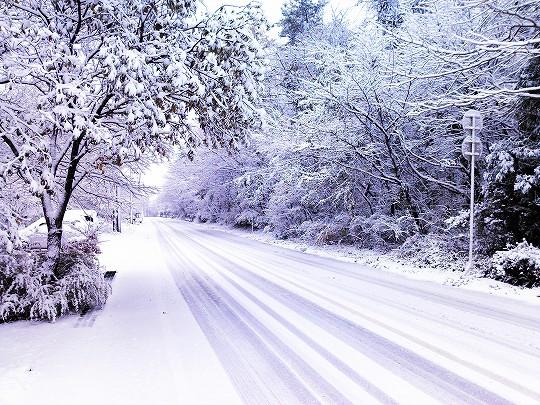 ペンション周辺の雪