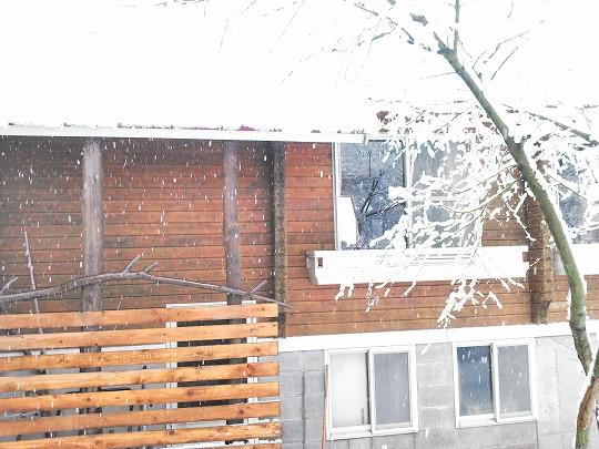 雪が降り出した大山