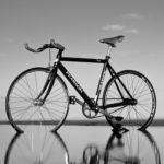 弓ヶ浜サイクリングコース開通