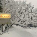 除雪はさてていますがスタッドレスタイヤ・タイヤチェーンは必須!