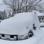 極寒の3日間が過ぎ来週は春の陽気?!