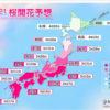 鳥取県の桜はいつ咲く?2021年
